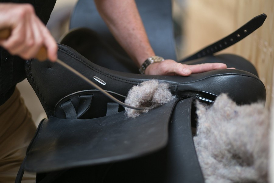 001 Saddlefitting Pferdesportzentrum Aldrans Kriemhild Morgenroth Stefanie Reindl Photography