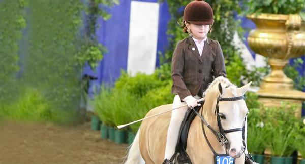 Pony Show Testimonial