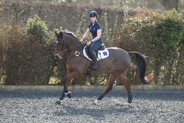 Chloe Mariani Horobin Saddle