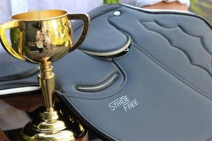 Stride Free Saddle Used On Protectionist In Training Leading Up To The Melbourne Cup