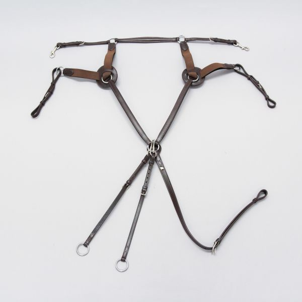 Phs 5 Point Breastplate